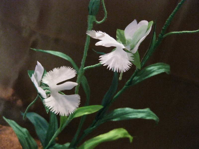 СКИДКА 40% интерьерная композиция орхидея белой цапли