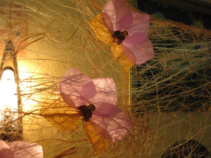 панно-веер Пристальный взгляд цветка