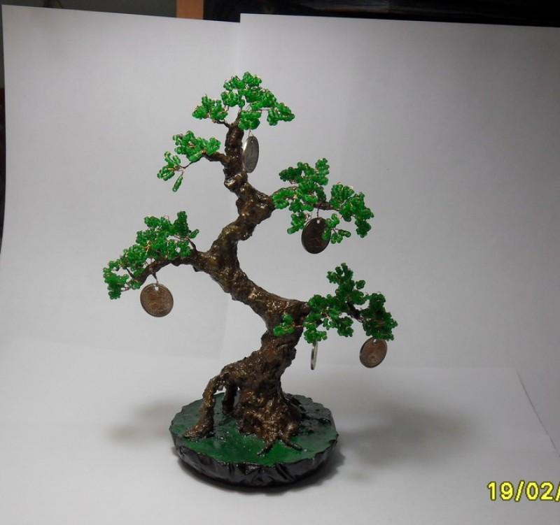 Дерево -Денежный бонсай