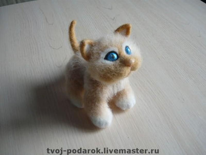 Котенок Сима