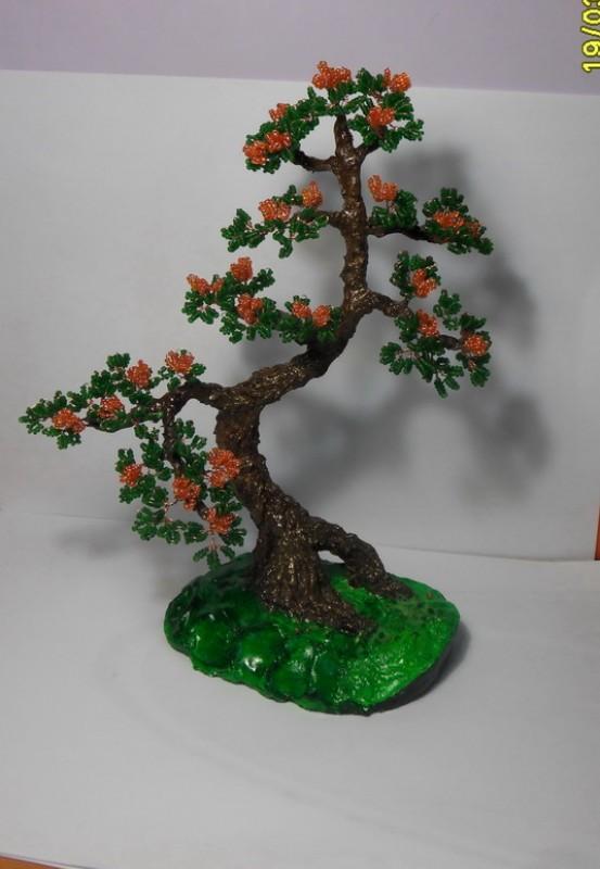 Дерево Бонсай-цветущий