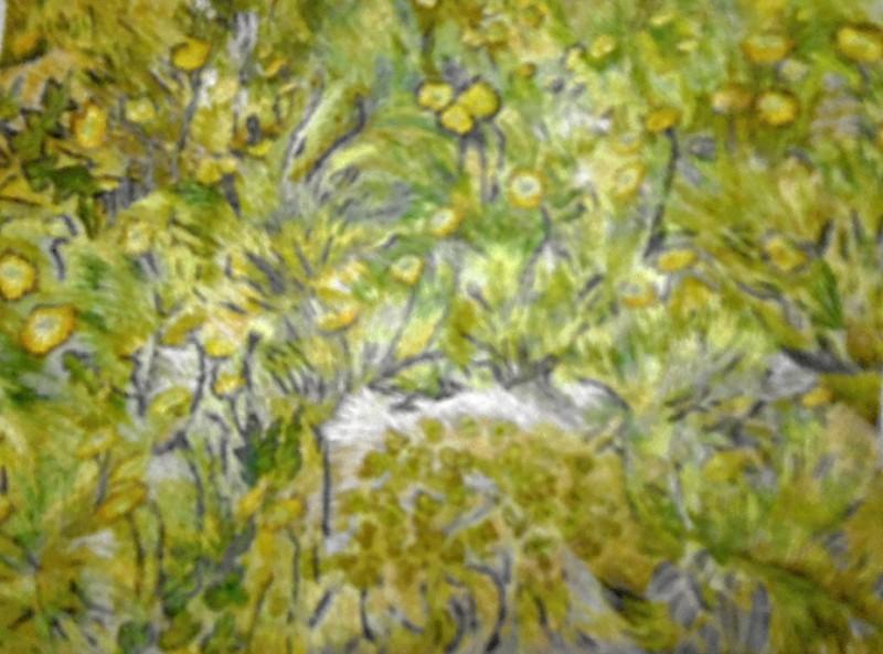 Картина  Поле желтых цветов