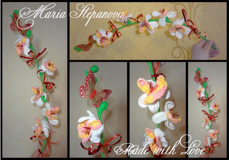 Веточка орхидеи. Цветы.