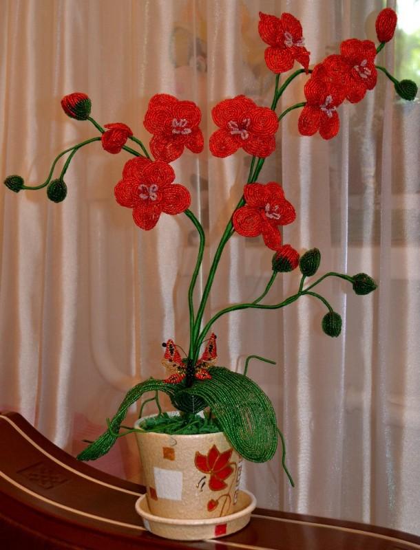 Красная орхидея из бисера