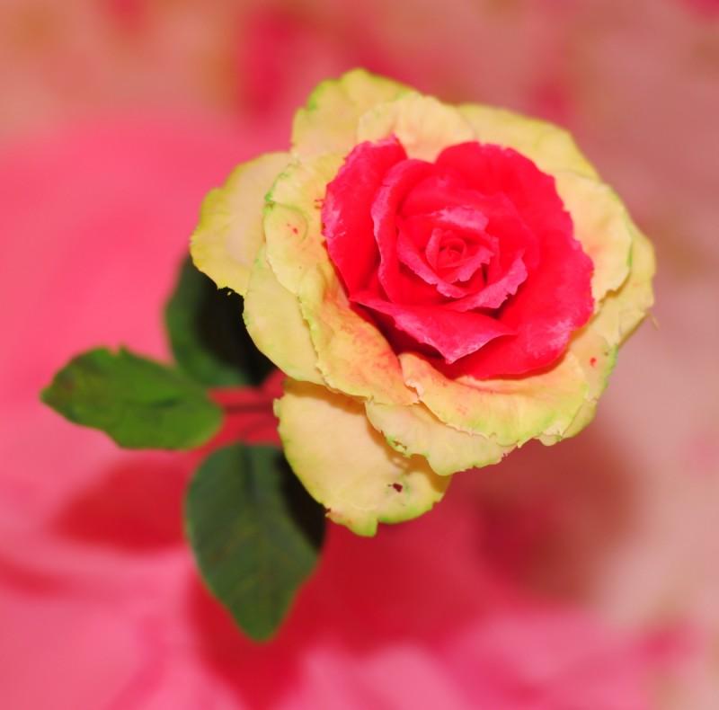Необычная роза ручной работы