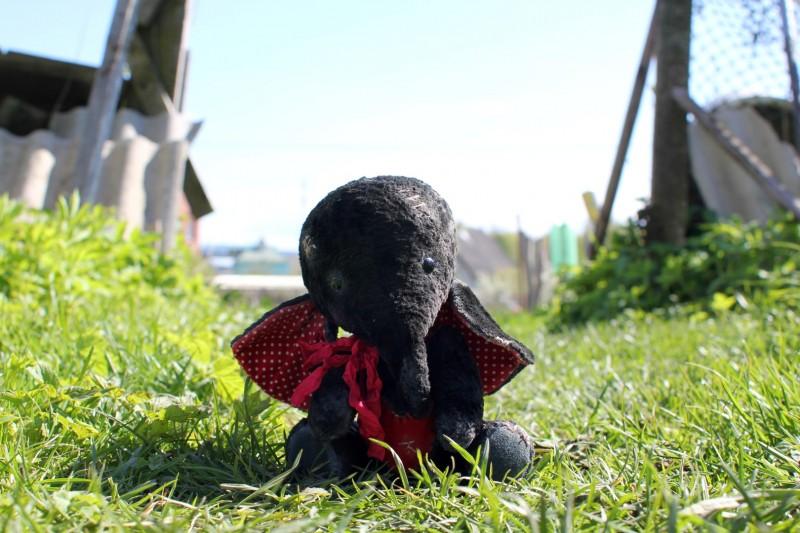 СердеШный слоник