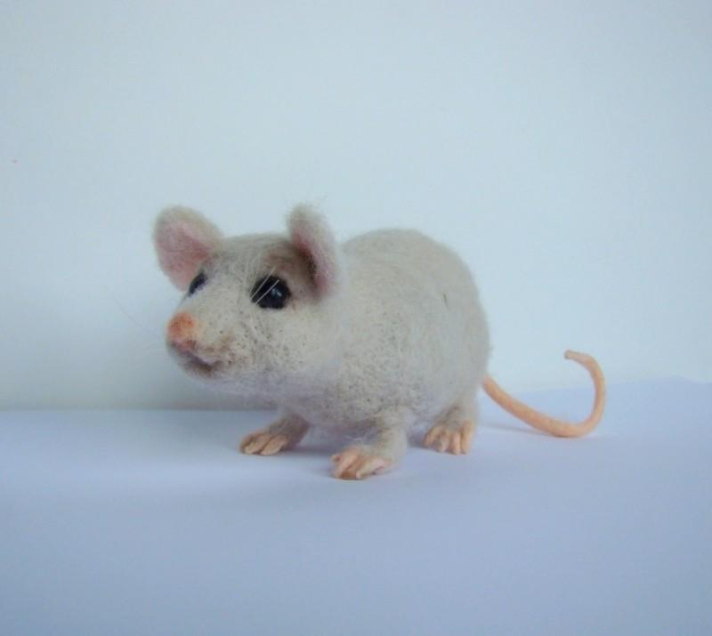 Мышь лабораторная, ученая.