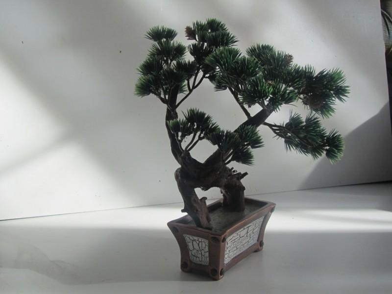 Бонсай в керамике