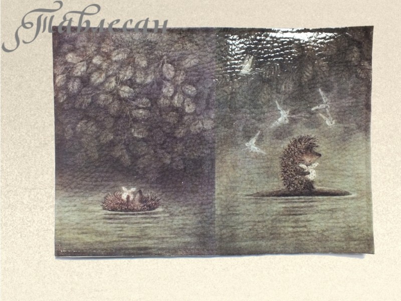 Обложка для паспорта  Ежик в тумане кожа