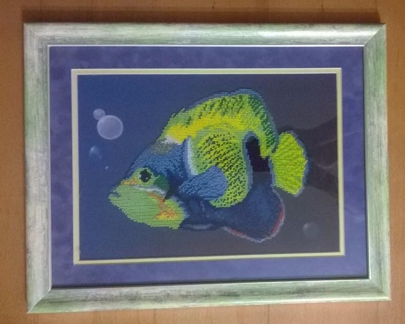 Рыбка сине-зелёная