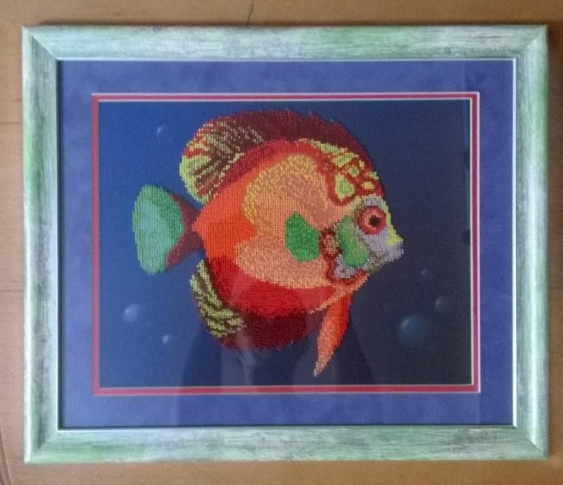 Рыбка красно-оранжевая