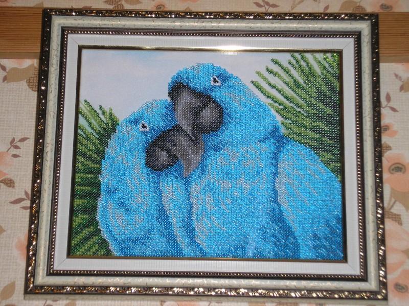 Картина вышитая бисером Влюбленные попугайчики