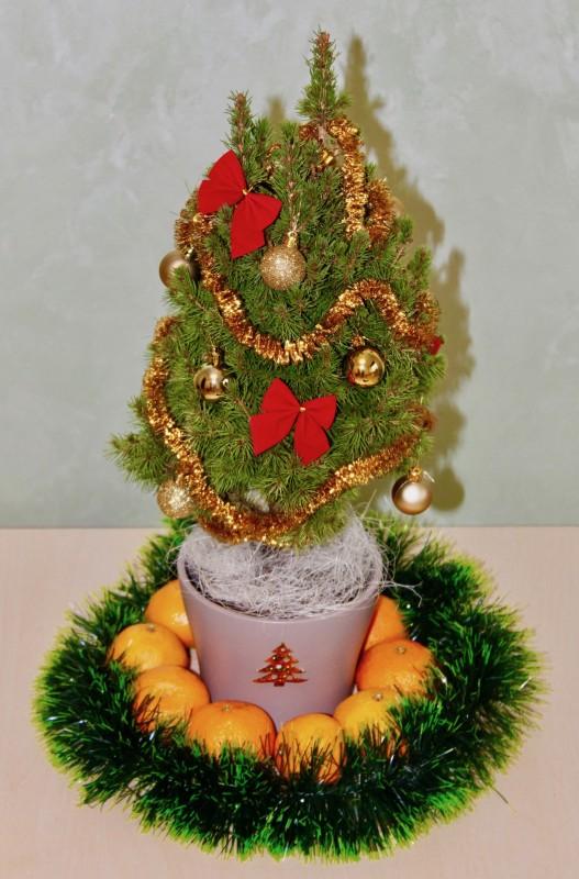 Живая украшенная новогодняя елочка