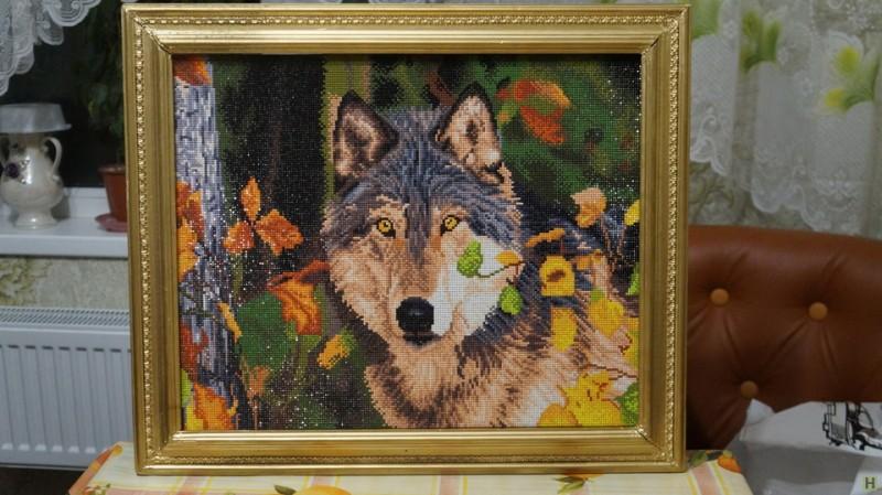 КартинаВолк хозяин леса.