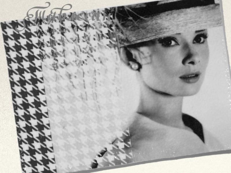 Обложка для паспорта Одри Хепберн кожа