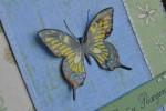 Поздравительная открытка с бабочкой.