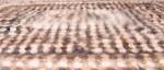 Плед артикул№21пл  вязанный из собачьей   шерсти 188х168.