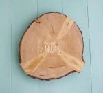 Спилы дерева. Деревянные спилы разных пород и диаметров.